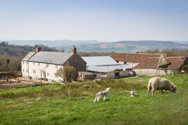 Reclaiming VAT on Farmhouse Repairs